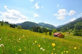 Gebirgstal mit Haus im Frühling