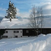 Stadelabend & Holzfällergaudi